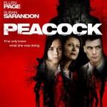 Peacock – Descargar Bajar Download
