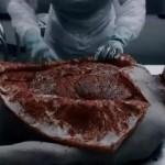Descargar Saw VI El Juego del miedo DvdRip Original Sub-Español