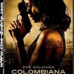 Colombiana [2011][BRScrenner][Castellano][1 Link]
