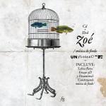 Zoé  Mtv Unplugged (2011)(df)