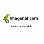 Castigo Sangriento (Detention)  [dvdrip][2011[]accion][latino][putlocker]