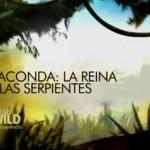 Anaconda – La reina de las serpientes (MKV)-[Castellano]