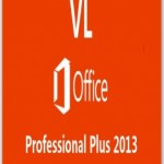 TEU Microsoft Office Professional Plus 2013 (Final) (ESP)