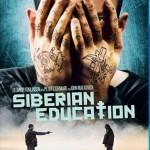 Siberian Education [2013] [BluRay] subtitulada