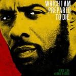 Descargar Mandela: Un largo camino hacia la libertad (2013) DvdRip latino