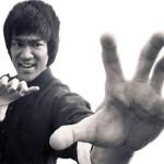 Descargar Libros de Bruce Lee 7/7 (Mega)
