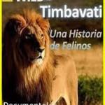 NATGEO: Una Historia de Felinos 3/3 HD (Mega)