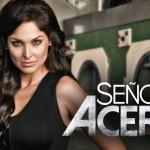 Descargar Señora Acero Serie Completa Latino (Mega)