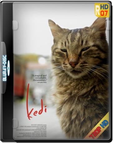Descargar Gatos de Estambul (Kedi) 2017 Español (Mega)