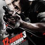 Descargar 12 Round 3 (2015) Español Latino (Mega)