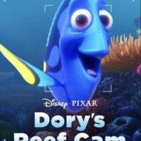 Descargar La cámara del arrecife de Dory(Dory's Reef Cam) [2020]